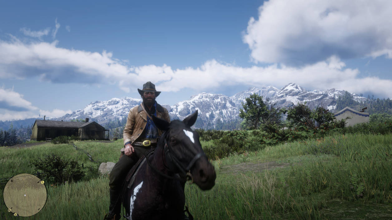 Why Red Dead Redemption 2 wants you to switch to Xbox One X or PS4 Pro