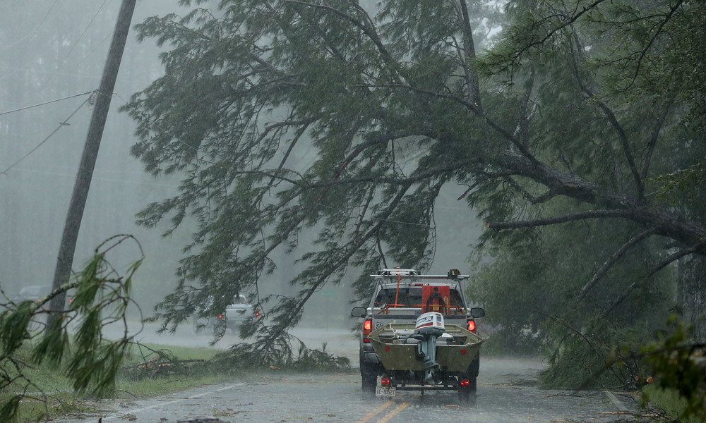 NEW BERN, NC - SEPTEMBER 14: A volunteer rescue truck drives underneath a fallen tree that is suspended by power lines blown down by Hurricane Florence September 14, 2018 in New Bern, North Carolina. Hurricane Florence made landfall in North Carolina as a Category 1 storm and flooding from the heavy rain is forcing hundreds of people to call for emergency rescues in the area around New Bern, North Carolina, which sits at the confluence of the Nueces and Trent rivers. Chip Somodevilla/Getty Images/AFP  CHIP SOMODEVILLA / GETTY IMAGES NORTH AMERICA / AFP