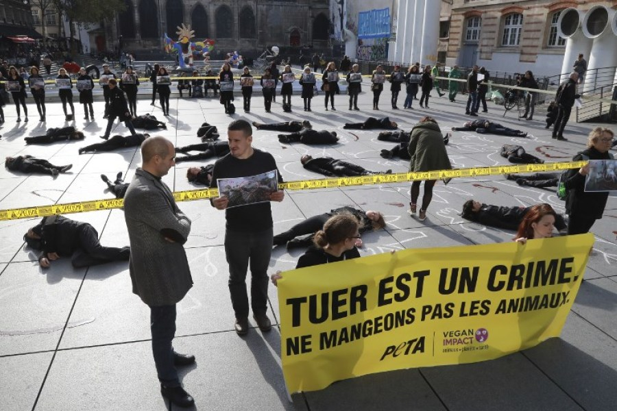 Action coup de poing de Peta France à Paris le 1er novembre 2017 -