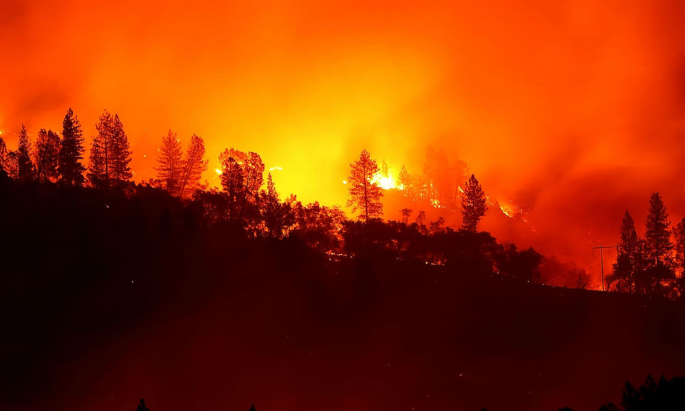 L'incendie Camp Fire ravage le nord de la Californie