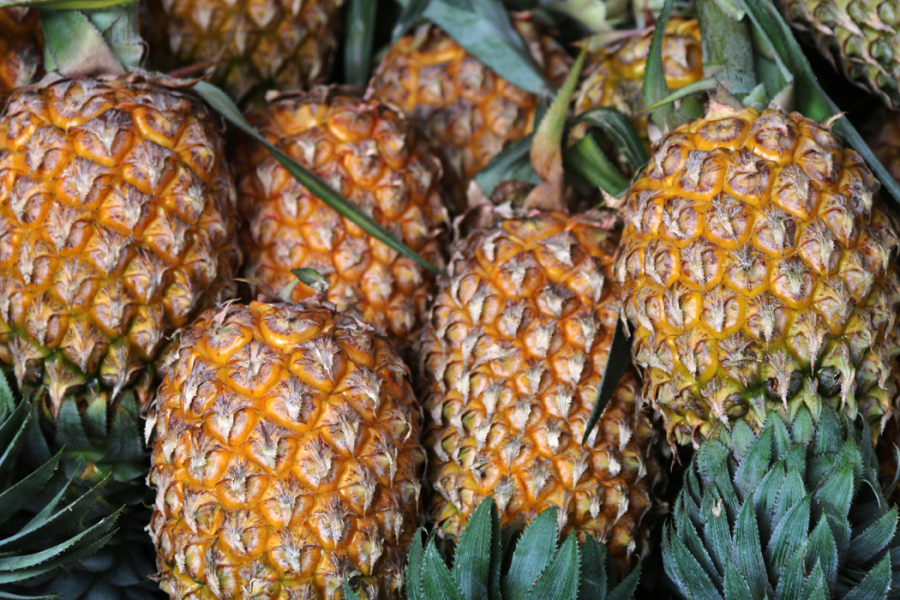 Des ananas (illustration).