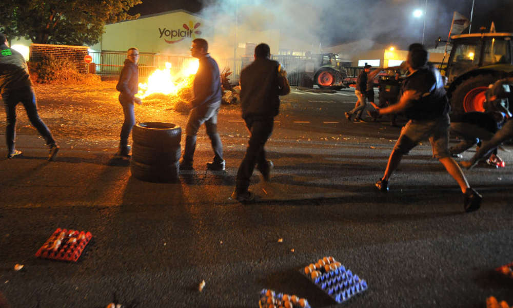 Protesters throw eggs and block access to SODIAAL, a dairy cooperative, to protest against the plunging prices of milk on July 12, 2016 in Le Mans, western France.