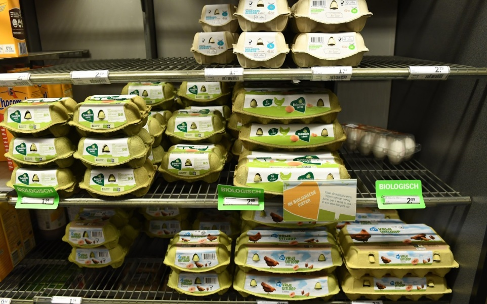 Interdiction des œufs de poules en batterie en 2022 — Alimentation