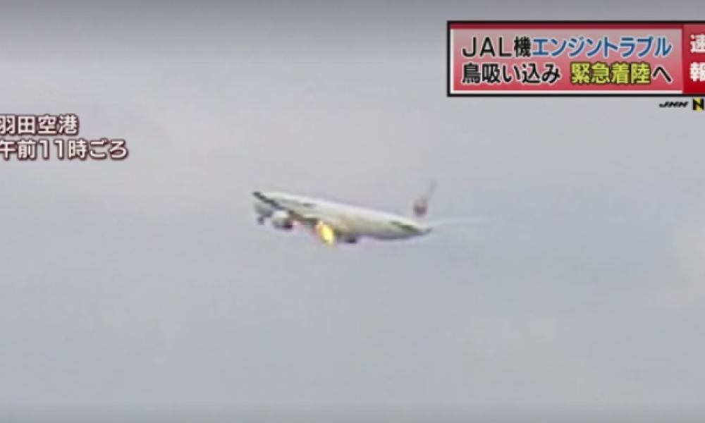 L'avion de la Japan Airlines, peu avant son atterrissage d'urgence le 5 septembre 2017.