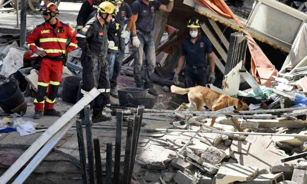 Firefighters looks at a rescue-dog as they work at the area where a residential building collapsed in Los Cristianos, in the Spanish Canary island of Tenerife's town of Arona, on April 14, 2016. A woman was found dead under the rubble of a residential building that collapsed today in the Spanish archipelago of the Canary Islands for unknown reasons yet, authorities stated. DESIREE MARTIN / AFP