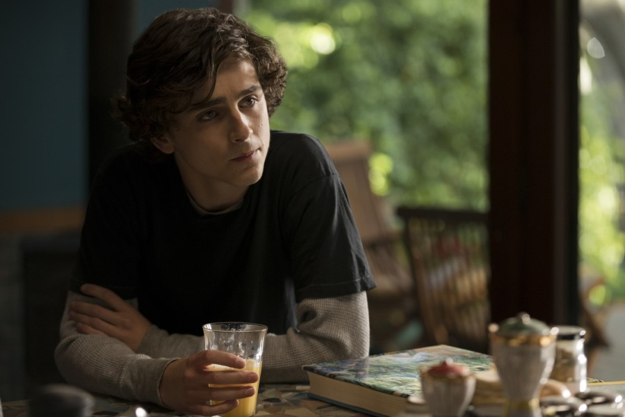 Timothée Chalamet dans My Beautiful boy