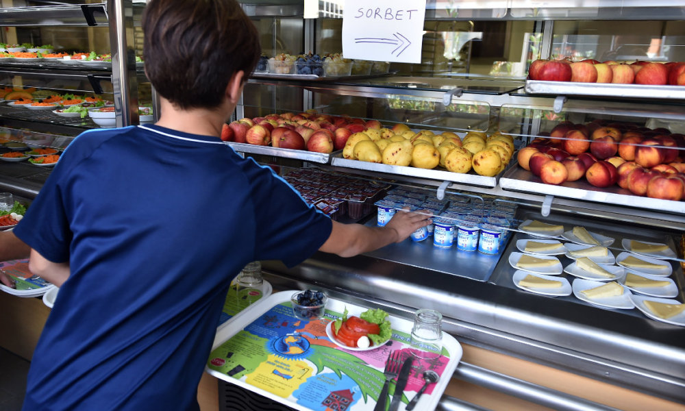 Cantine toulouse