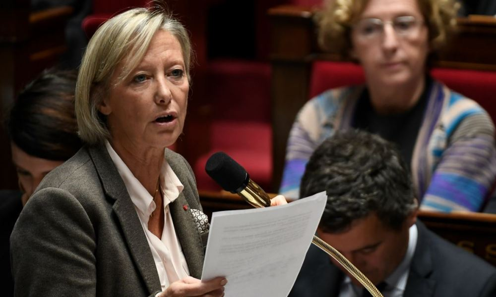 French Junior Minister in charge of Disabled People Sophie Cluzel speaks during a session of questions to the government at the National Assembly in Paris on November 14, 2017.  STEPHANE DE SAKUTIN / AFP