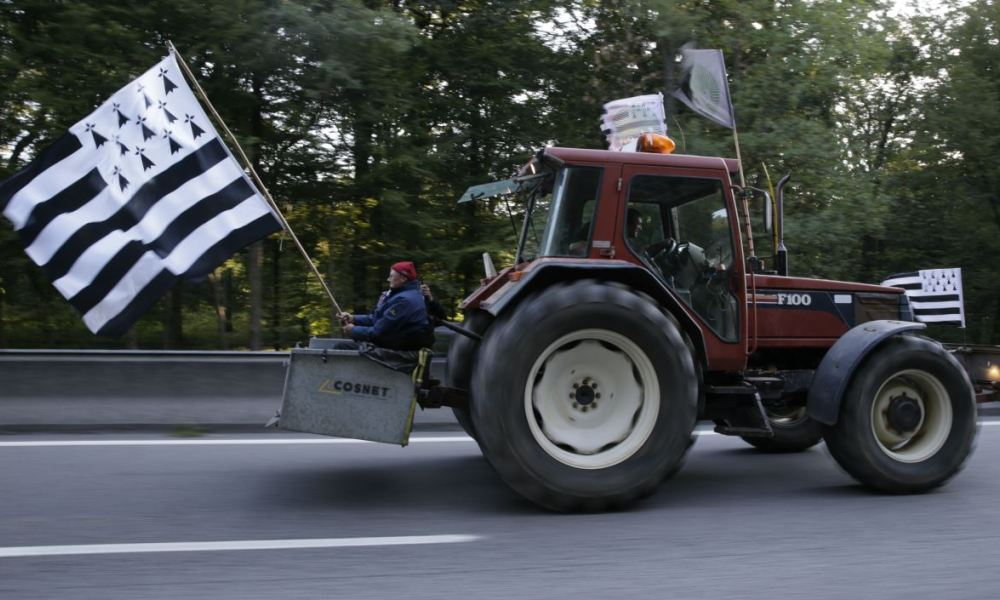 A Breton farmer holding a Breton flag on his tractor, drives on the A13 motorway near Mantes-la-Jolie and heading to Paris on September 3, 2015, to take part in a national demonstration of farmers in Paris. Farmers riding more than 1,000 tractors will try to blockade Paris as they converge on the French capital in protest at falling prices that they say are endangering their livelihoods. AFP PHOTO / KENZO TRIBOUILLARD  KENZO TRIBOUILLARD / AFP