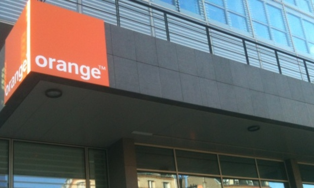 France Telecom (qui va devenir officiellement Orange), a plombé les comptes du Fonds stratégique d'investissement en 2012.