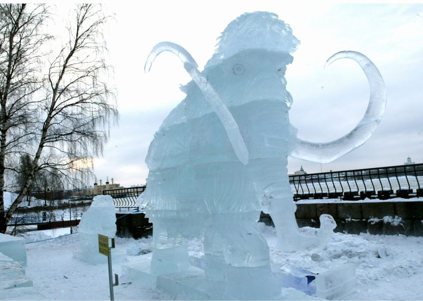 A 3,5 meter high ice mammoth welcomes the visitors at the second International Ice Sculpture competition held on the weekend at the Helsinki Zoo, 25 January 2004.  VILLE MYLLYNEN / LEHTIKUVA / AFP