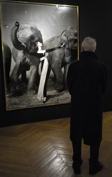 """dovima with elephants"" adjugé 841.000 euros"