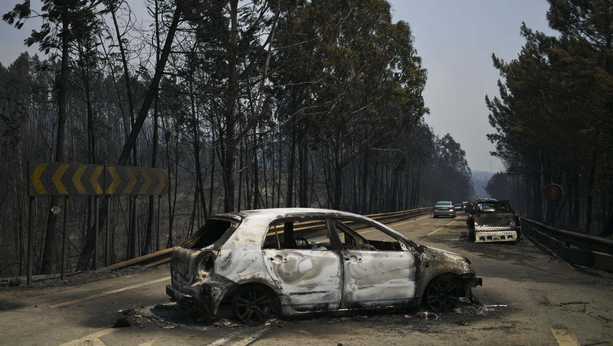 A picture taken on June 18, 2017 shows burnt cars on a road after a wildfire in Figueiro dos Vinhos. A wildfire in central Portugal killed at least 57 people and injured 59 others, most of them burning to death in their cars, the government said on June 18, 2017.  PATRICIA DE MELO MOREIRA / AFP