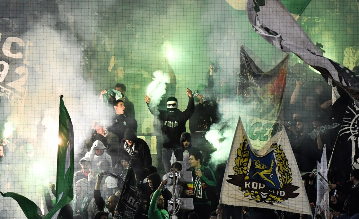 supporters verts AFP.jpg