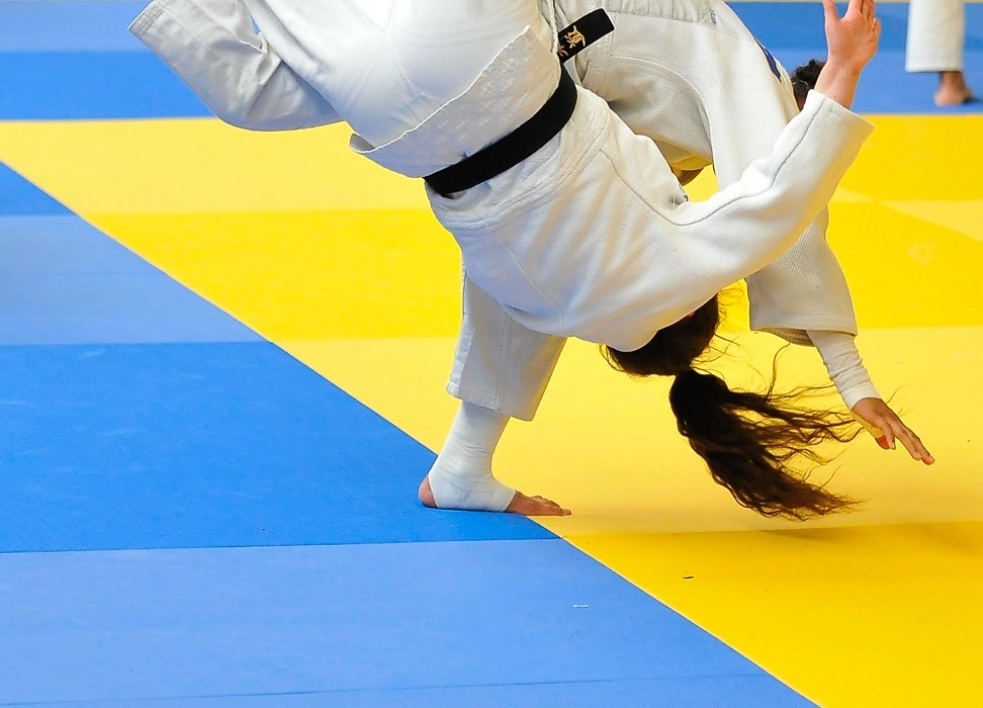 Judo (illustration)