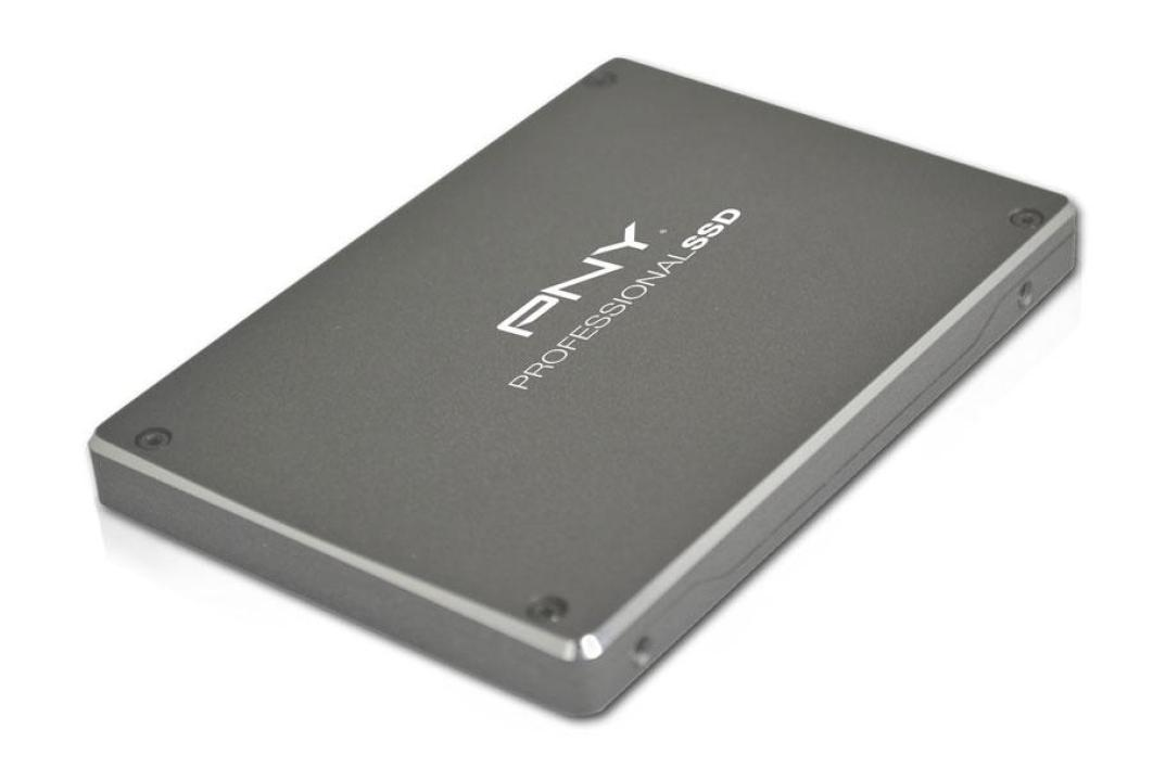 PNY Professional SSD 120 Go