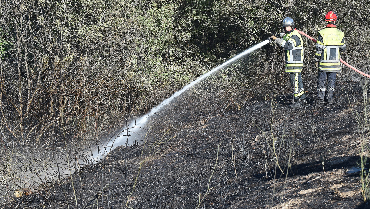 incendies feu - French firemen spray water near trees in Les Pennes Mirabeau, north of Marseille on August 11, 2016 following a fire which has devastated some 3,300 hectares in the area. France mobilised 1,500 firefighters on August 11, 2016, to tackle wildfires in countryside north of Marseille that have gutted buildings and forced more than 1,000 people to flee their homes. Whipped up by strong winds, the blaze took hold around 3:30 pm (1330 GMT) and has spread some 3,300 hectares of scrubland, grass and some wooded areas, according to firefighters.  BORIS HORVAT / AFP