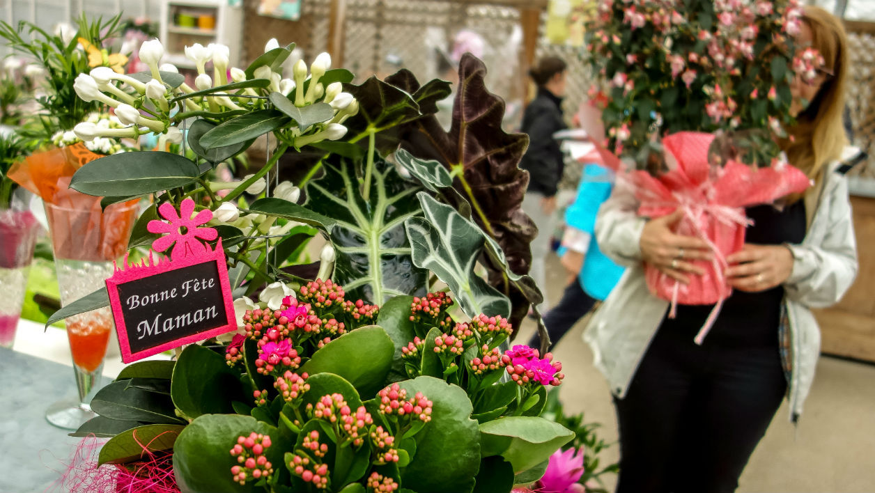 People buy flowers for Mother's Day on May 29, 2016 in Godewaersvelde, northern France.  PHILIPPE HUGUEN / AFP