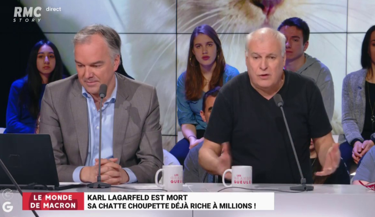 "Karl Lagerfeld lègue sa fortune à son chat: ""Une insulte à la raison humaine"""