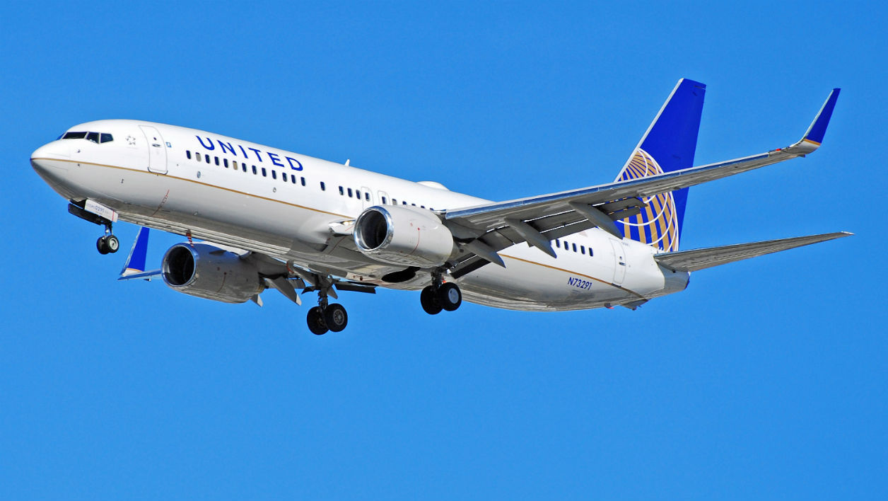 Un passager piqu par un scorpion sur un vol united airlines for Compagnie aerienne americaine vol interieur