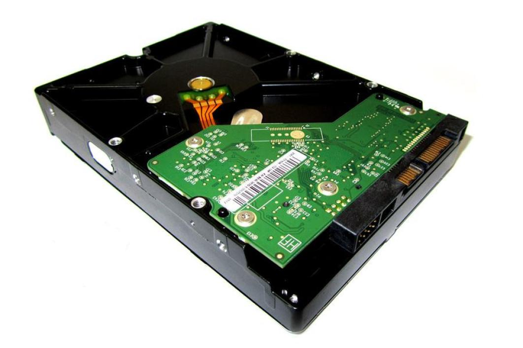 Western Digital WD Caviar Green 2 To (WD20EARS)