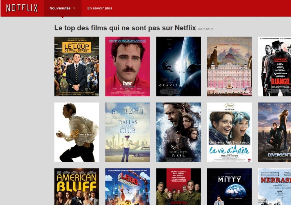 NotFlix, le site parodique de NetFlix...made in France.