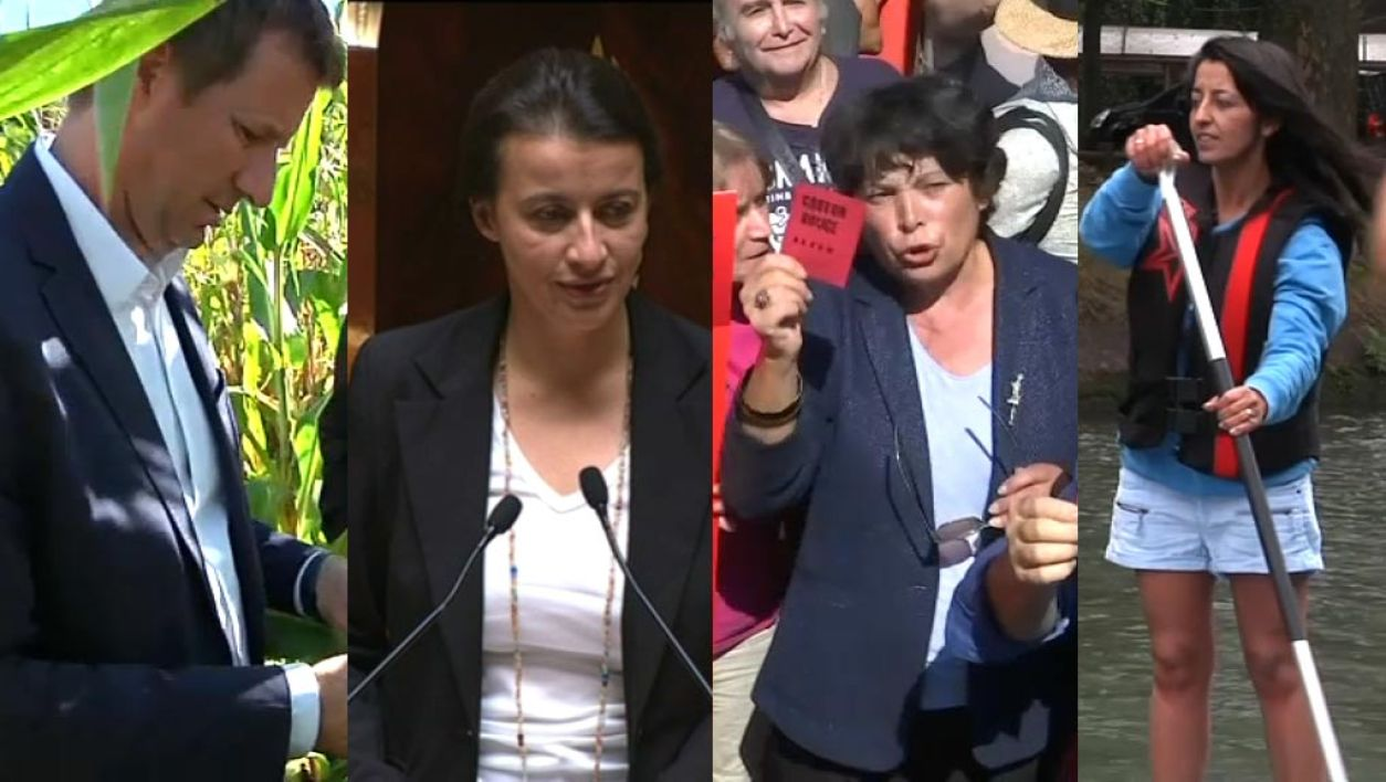 primaire EELV, candidats