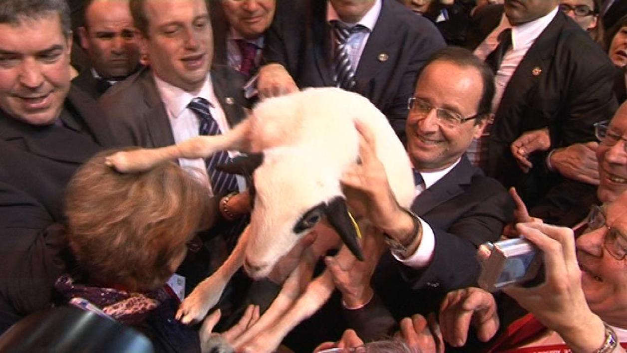 Dans le sillage de Hollande au Salon de l'agriculture