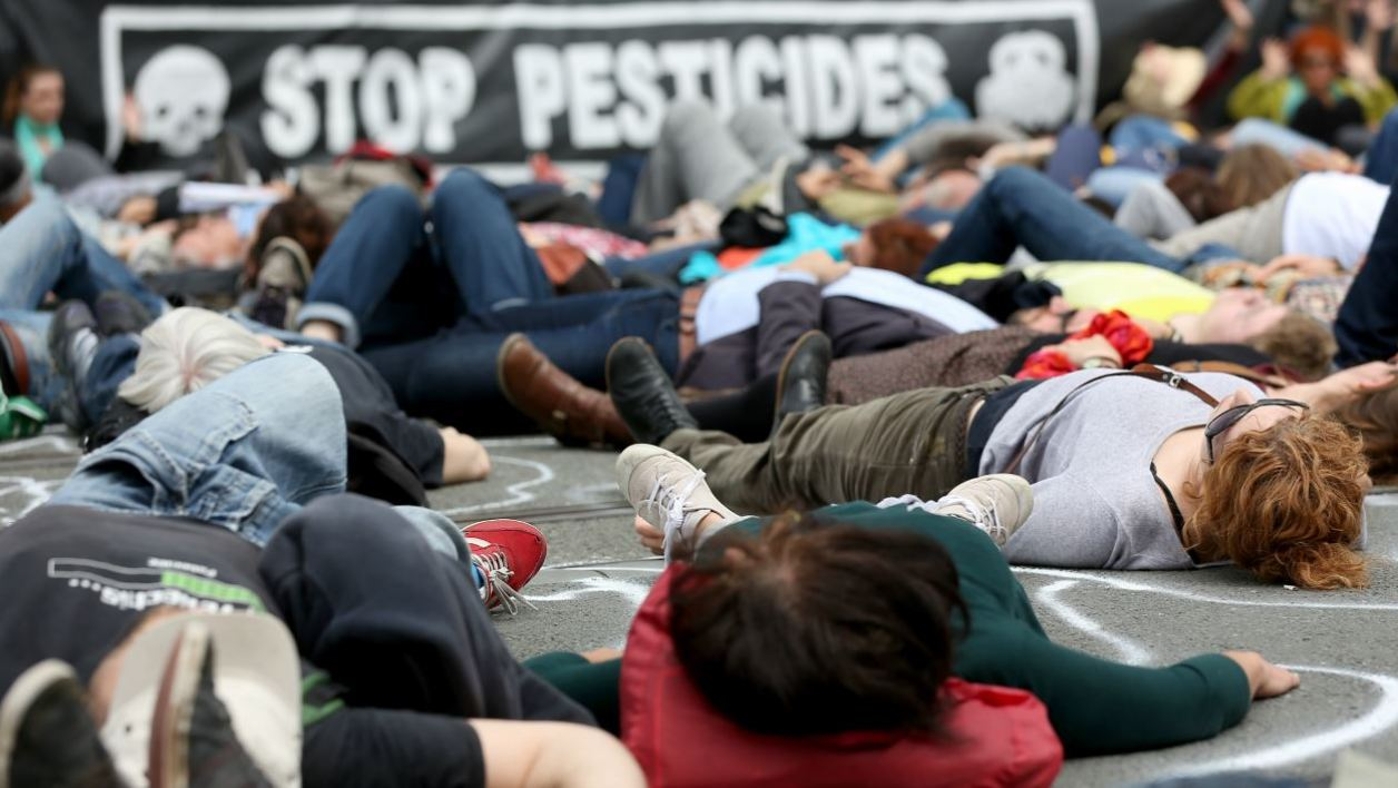 """Protesters lie on the ground to represent people poisoned by pesticides on May 31, 2016, in Bordeaux, southwestern France, during a demonstration against the use of pesticides in viticulture, during the inauguration of the city's new wine museum, """"La Cite du Vin"""".  Romain Perrocheau / AFP"""