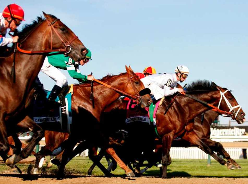 "Un ""FR"" dans le Grand National"
