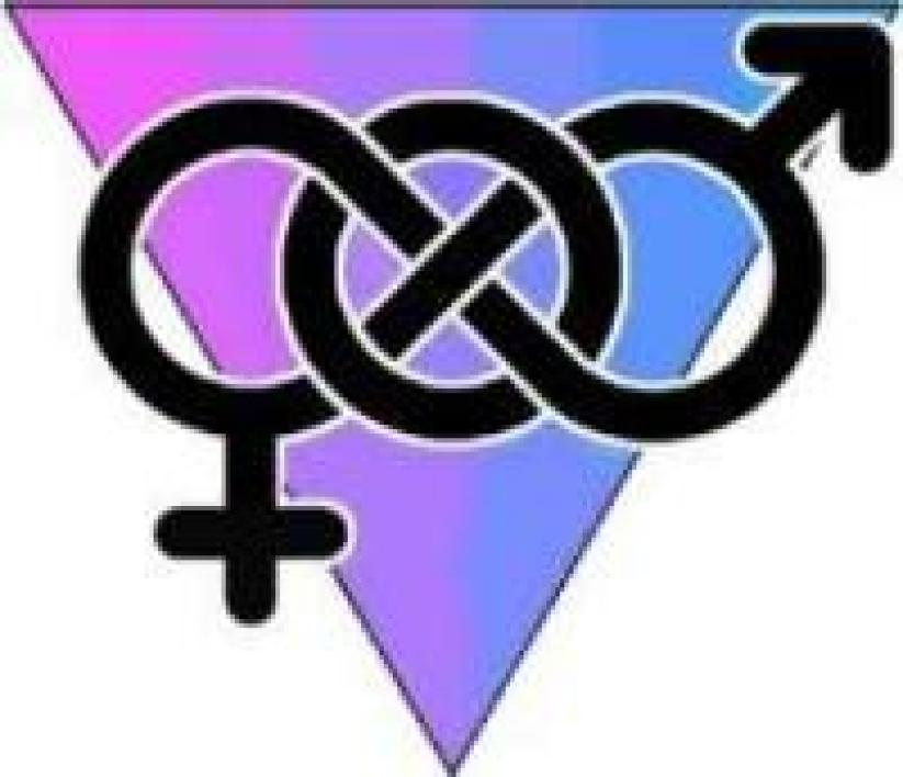 Bi or not to be bisexuel