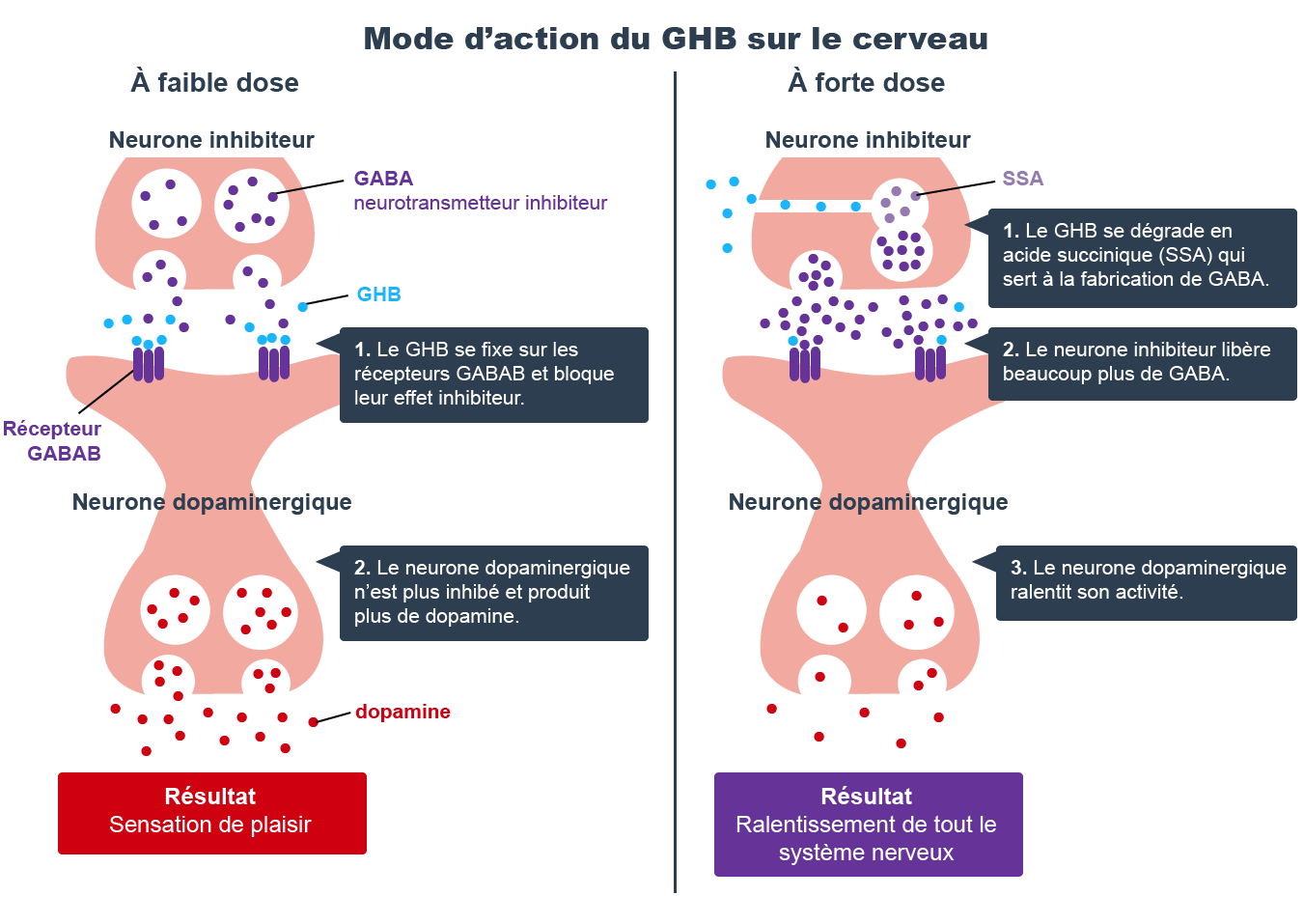 infographie GHB