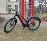 Canvas Neo 1 (Cannondale)