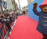 Paddington, l'ourson qui fait les affaires de Canal+