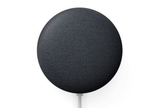 Nest Mini (2e Generation) (Google)