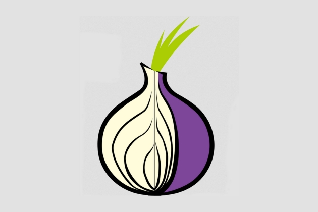 Tor onion dark web