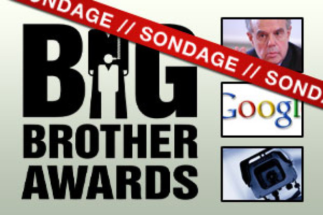 Sondage : qui est le Big Brother sur Internet en 2010 ?