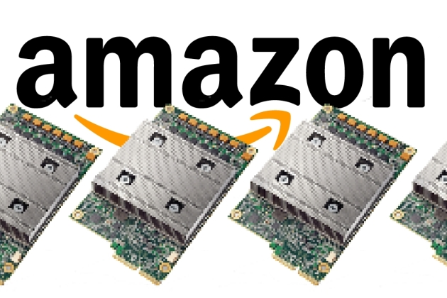 Amazon Puces IA.jpg