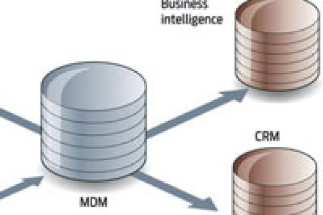 Le Master Data Management