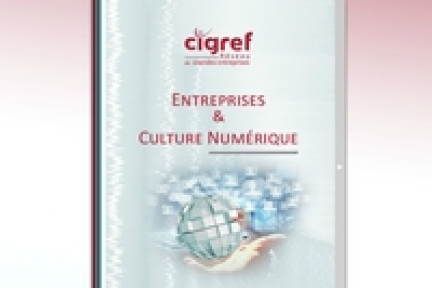 Big data, serious game, transformation RH… Le Cigref multiplie les publications