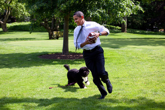 800px-Barack_Obama_runs_away_from_the_family_dog_2009-05-12.jpg