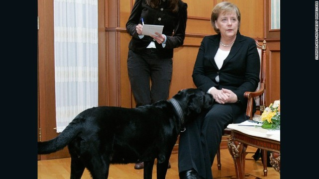 Angela Merkel rencontre Koni en 2007 - AFP/Getty Images
