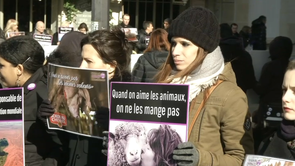 Salon de l 39 agriculture des militants vegan manifestent for Salon vegan paris